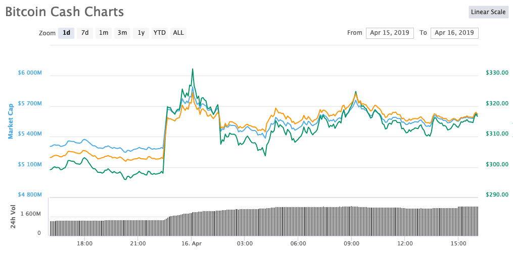 bitcoin cash bch 24 price rise